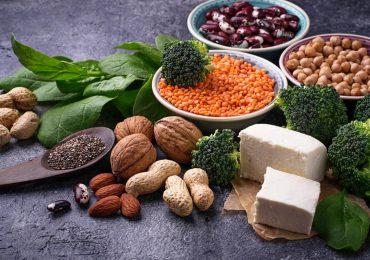 Radicle и Syngenta инвестируют в производство растительного белка