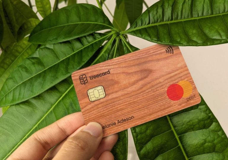 Поисковая система Ecosia стала инвестором стартапа TreeCard